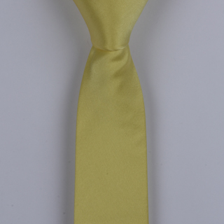 Yellow skinny Silk Satin Tie-0
