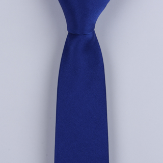Royal Skinny Silk Satin Tie-0