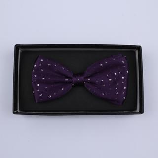 Purple Sparkly Silk / Lurex Bow Tie