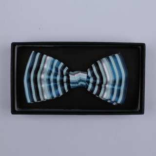 Blue/.Silver Striped Bow Tie