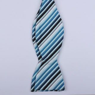 Blue/Multi Striped Self-Tie Bow Ties-0