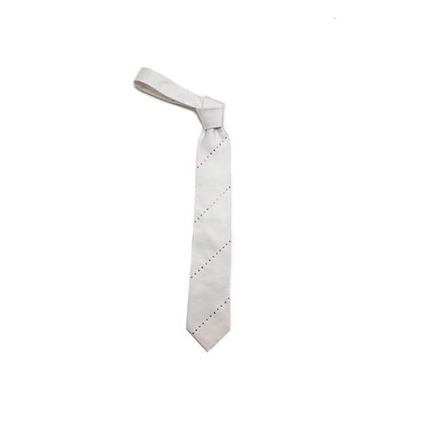 WHITE EMBELLISHED DIAGONAL StRIPES SKINNY TIE-0