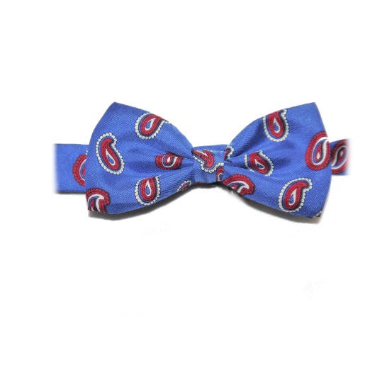 BLUE/RED SMALL PAISLEY PRINTED SILK BOW TIE